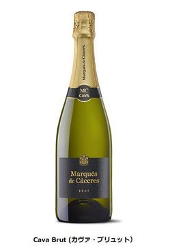 アルカン、スペインのワイナリー「マルケス・デ・カセレス」のスパークリングワイン「Cava Brut」を発売