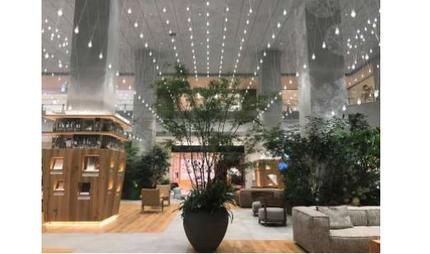 玉川高島屋S・C、本館1階アトリウム空間「グランパティオ」と本館2階のリニューアルオープンし開業50周年開業事業が完成
