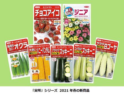 サカタのタネ、絵袋種子「実咲」シリーズからミニトマト「チョコアイコ」など来年春の新商品7点を発売
