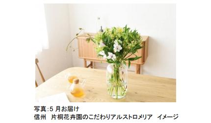 日比谷花壇、フラワーアーティスト監修コース「あなたと暮らすお花たち 前田有紀さんと華やぐお花たち」を開始